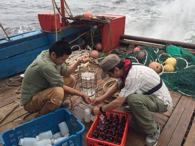 瑞安近期未发生赤潮,市民食用贝壳类海鲜一定要煮熟